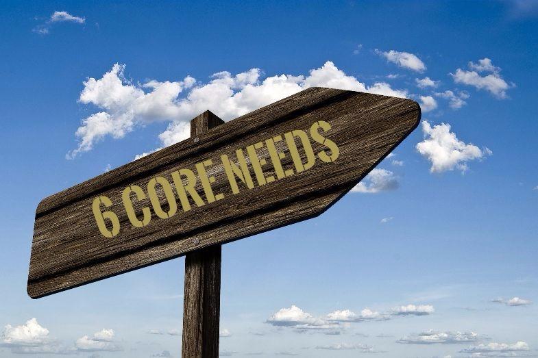 6 Core needs